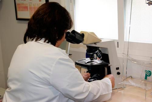 690304-centro-dermatologico-dr-galvan-perez-del-pulgar-mujer-trabajando